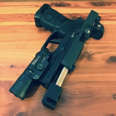 Introducing: Project Nemesis - P320 Roland Special | Primary